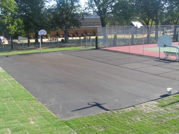 Steve Nash Court before Sport Court